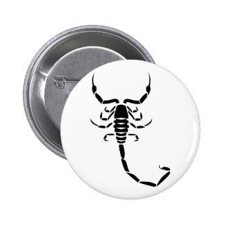 Escorpión negro pins