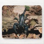 Escorpión negro tapete de ratones