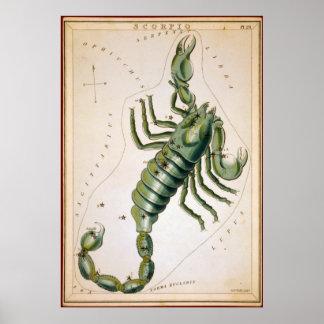 Escorpión Poster