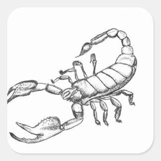 Escorpión Pegatina Cuadrada