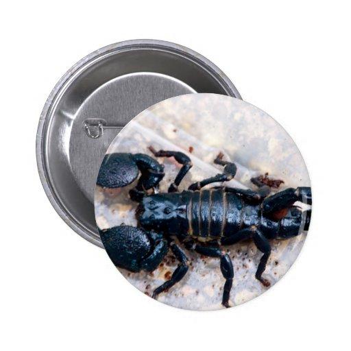 Escorpión Pin