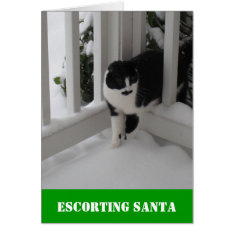 Escorting Santa Card By Spec Ops Cat at Zazzle