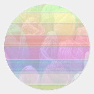 Escriba en sombra multicolora de la luz de la imag pegatina