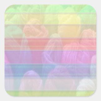 Escriba en sombra multicolora de la luz de la imag colcomanias cuadradas
