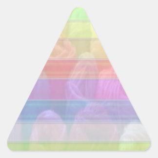 Escriba en sombra multicolora de la luz de la pegatina triangular