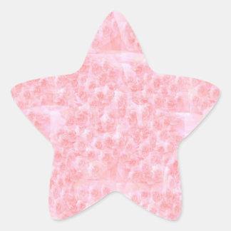 Escribir-en las flores de RedRose de la Luz-sombra Calcomania Forma De Estrella Personalizada