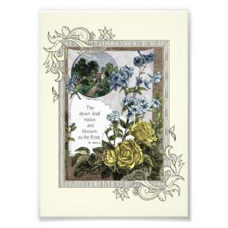Escritura de la biblia del vintage con los rosas fotografías