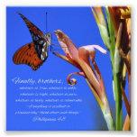 Escritura del 4:8 de Phillipians de la mariposa y  Arte Fotografico