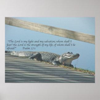 Escritura del cocodrilo póster