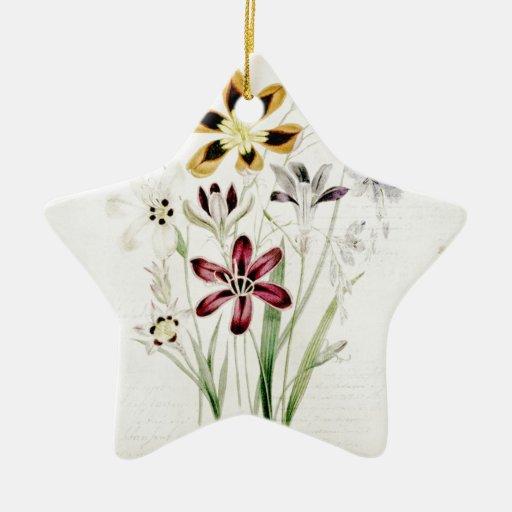 Escritura pintada del vintage del ramo de la flor  adorno de navidad