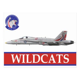 Escuadrilla de los GATOS MONTESES VFA-131 con F-18 Postal