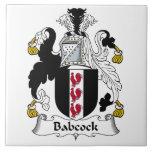 Escudo Babcock de la familia Tejas Cerámicas