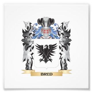 Escudo de armas criado - escudo de la familia fotografía