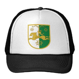 Escudo de armas de Abjasia Gorras De Camionero