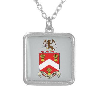 Escudo de armas de Barron Colgante Cuadrado