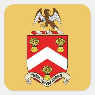 Escudo de armas de Barron Pegatina Cuadrada