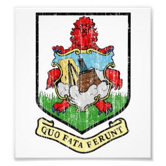 Escudo de armas de Bermudas Impresiones Fotograficas