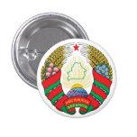 Escudo de armas de Bielorrusia Pin