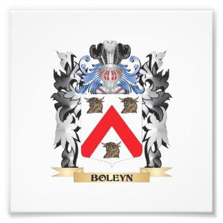 Escudo de armas de Boleyn - escudo de la familia Fotografía