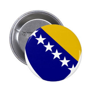 Escudo de armas de Bosnia y Herzegovina Pin