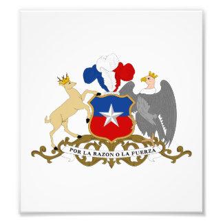 Escudo de armas de Chile Arte Fotográfico
