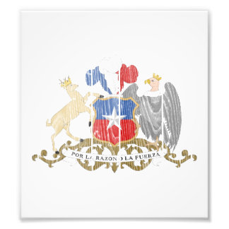 Escudo de armas de Chile Cojinete