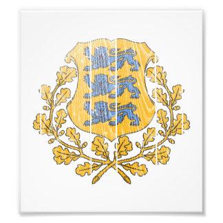 Escudo de armas de Estonia Fotografia
