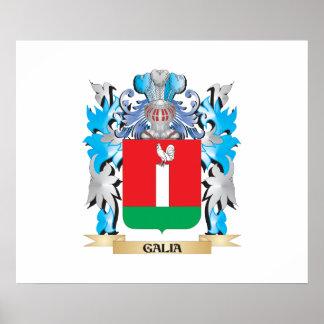 Escudo de armas de Galia - escudo de la familia Poster