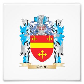 Escudo de armas de Gore - escudo de la familia Foto