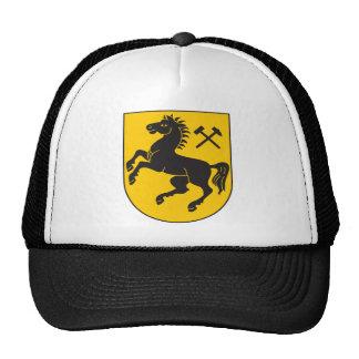 Escudo de armas de Herne Gorros Bordados