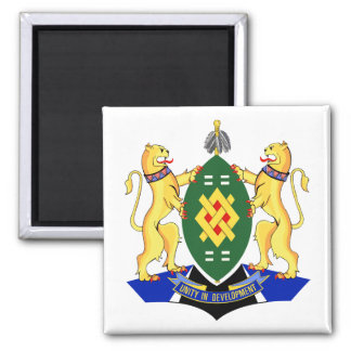 Escudo de armas de Johannesburg Imán Cuadrado