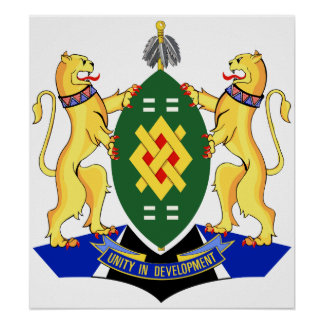 Escudo de armas de Johannesburg Póster