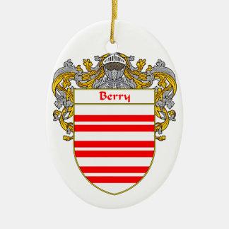 Escudo de armas de la baya/escudo de la familia adorno ovalado de cerámica