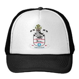 Escudo de armas de la ciudad del metropolitano de  gorra