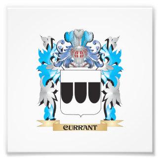Escudo de armas de la pasa - escudo de la familia