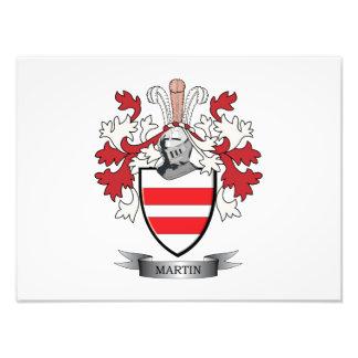 Escudo de armas de Martin Cojinete