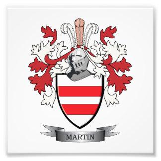 Escudo de armas de Martin Fotografía