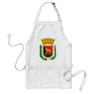 Escudo de armas de Ponce Delantal