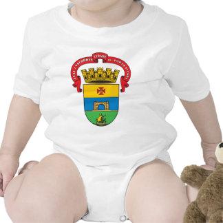 Escudo de armas de Porto Alegre Trajes De Bebé