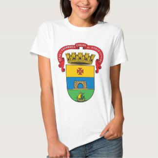 Escudo de armas de Porto Alegre Polera