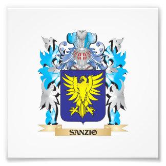 Escudo de armas de Sanzio - escudo de la familia Arte Fotografico