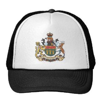 Escudo de armas de Saskatchewan (Canadá) Gorra