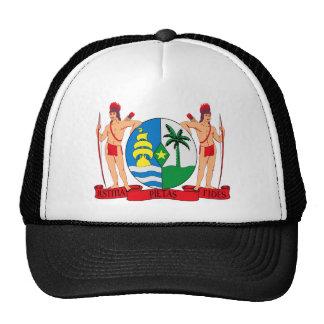 Escudo de armas de Suriname Gorro
