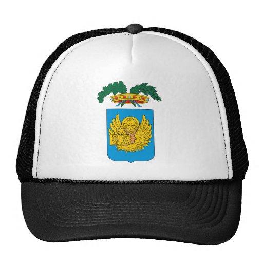 Escudo de armas de Venecia Gorro