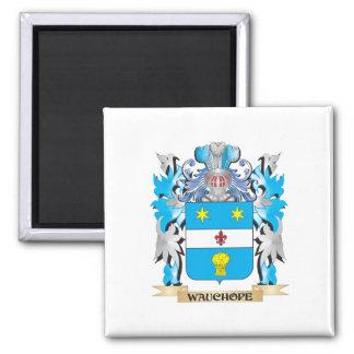 Escudo de armas de Wauchope - escudo de la familia Imán Cuadrado