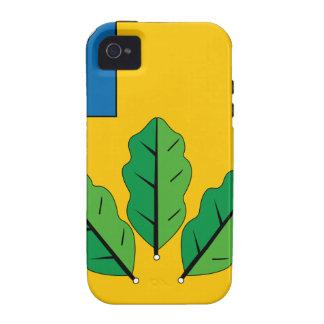 Escudo de armas del rayón de Novoburassky Vibe iPhone 4 Fundas