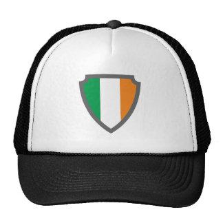 Escudo de armas escudo hatchment Irlanda país de i Gorra