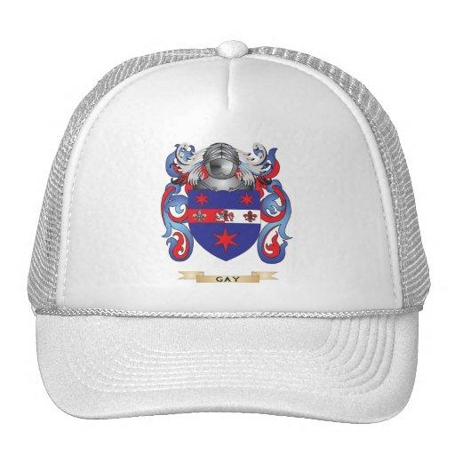 Escudo de armas gay (escudo de la familia) gorros bordados