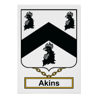 Escudo de la familia de Akins Póster