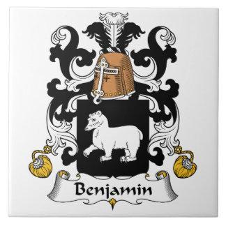 Escudo de la familia de Benjamin Azulejo Ceramica